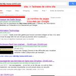 recherche de pages indexées sur google